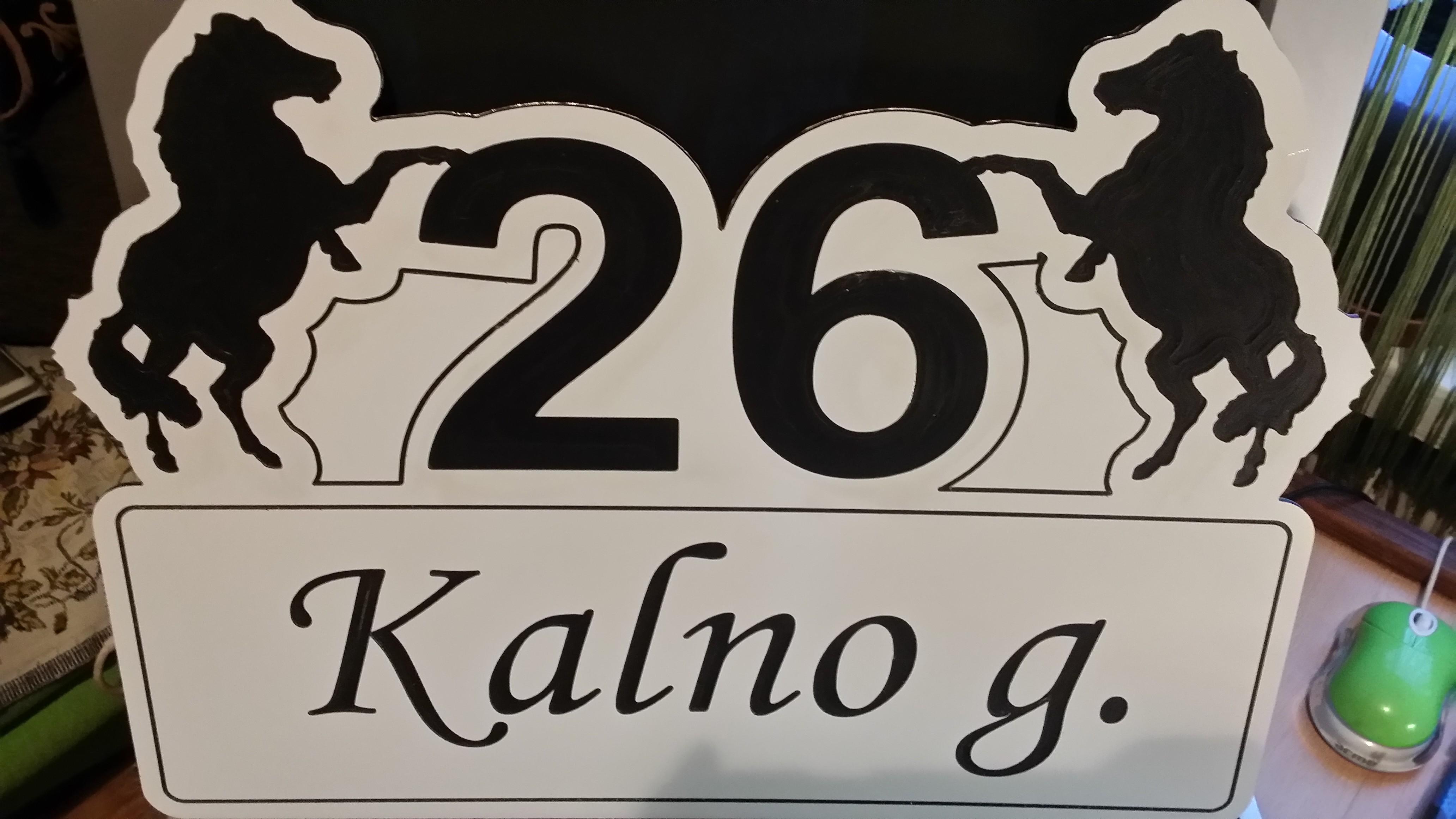 Namo numeris in-210